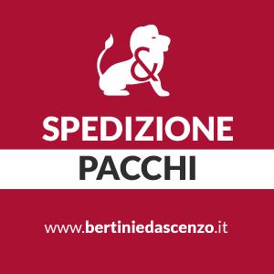 SPEDIZIONE PACCHI : Scegli il top con Bertini & D'Ascenzo